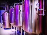 四川麦德森自酿啤酒坊加盟