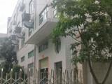 龍崗獨門獨院廠房出售