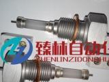 锅炉耐高温陶瓷电极DJM1615-87大型锅炉水位电极
