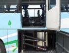 WL-T-1600客车行李舱用轮椅升降机