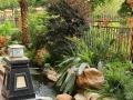 武汉专业室内绿植设计摆放,绿化养护施工,庭院设计