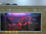 南昌定做鱼缸 观赏鱼海鲜池、水族工程