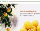 高新区水果免费配送(价格实时变动)