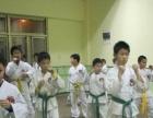 上海特种兵跆拳道招生/自由搏击/散打/拳击/防身术