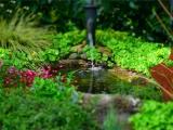 承接肇庆园林绿化工程,绿化养护