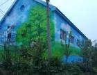 聊城新农村文化墙彩绘、美丽乡村墙绘 施工队