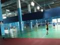 谷山体育公园游泳健身羽毛球超大面积