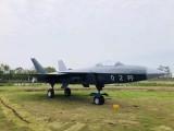 加工大型飞机模型 军事模型出租 坦克模型出租 河淼模型