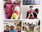 潍坊学习宠物美容的地方,山东潍坊爱尔宠物美容学校