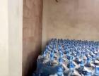 万寿活泉桶装健康饮用水