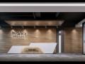 高新 50-1700平米 精装修带家具 延兴门地铁口