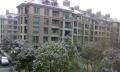 紫桂花园四房~桂花城~颐景园~文溪鼎园~耀江文鼎苑~金色蓝庭