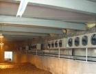 太原安装冷库、设计冷库制冷设备、维修冷库、医药冷库
