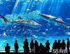 梦幻水母展鱼缸主题布置企鹅展海狮表演节目海洋展租赁