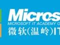 温岭电子商务 淘宝运营 美工培训在哪里学来微软IT学院