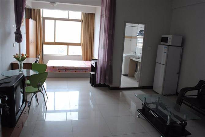 东湖附近 免中介费紫阳轩电梯公寓套间 一房一厅出租