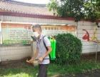 汕头龙湖专业白蚁防治