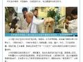 深圳宠物疑难病专家--瑞派五环潘天润