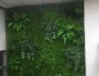 北京哪里有卖仿真植物墙仿真绿植墙定做草坪墙面装饰