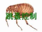 石排白蚁防治 石碣白蚁防治 茶山白蚁防治 专业资质单位