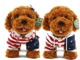 泰迪犬穿衣国旗泰迪狗狗贵宾犬公仔小狗毛绒玩具儿童生日礼物批发