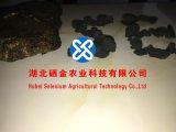 Selenium硒矿,硒矿Se600PPM,Cu 3PPM