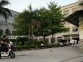 南沙黄阁独栋16000平方厂房出租,可分租,地段旺