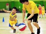 北京篮球培训 篮球培训学校 培训机构排名