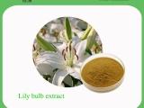 绿洲植物厂家供应 百合提取物 规格定制 养阴润肺,清心安神