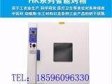 烘箱 干燥箱 电热鼓风干燥箱 电热烘箱 烘箱设备