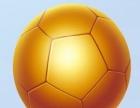 出售蓝球与足球各一个