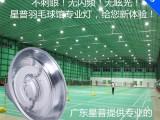 广东厂家直销室内低频无极灯羽毛球馆灯200W无闪频