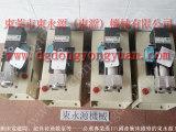 肯岳亚保护装置维修,东永源供应浙锻衝床油泵VS06-763