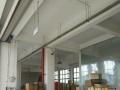 阳天路1号 厂房 1000平米