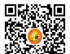 刚健体育杨浦体院暑期少儿/青少年游泳培训