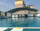 游泳健身+游泳培训班