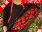 广安市区花店网上花店蛋糕店鲜花速递快递预订网上花店