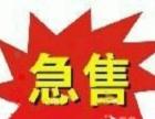 福田对面 创业中心南向写字楼40平更贷16.8万