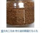 重庆肖三鸟店 出售各种画眉 八哥