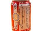 厂家直供易拉罐啤酒330ml全国招商