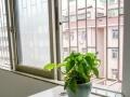 宝安新安西乡求职公寓青旅女生床位,地铁旁包水电网络