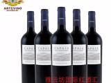 雅云坊进口葡萄酒招商加盟代理 卡帕雅梅洛赤霞珠红葡萄酒批发