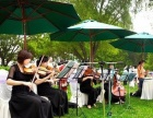 外籍爵士乐队 阿卡贝拉 苏州评弹 江南丝竹 小提琴四重奏