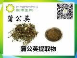 蒲公英提取物 黄酮5% 药食同源 SC生产许可 西安锐博工厂