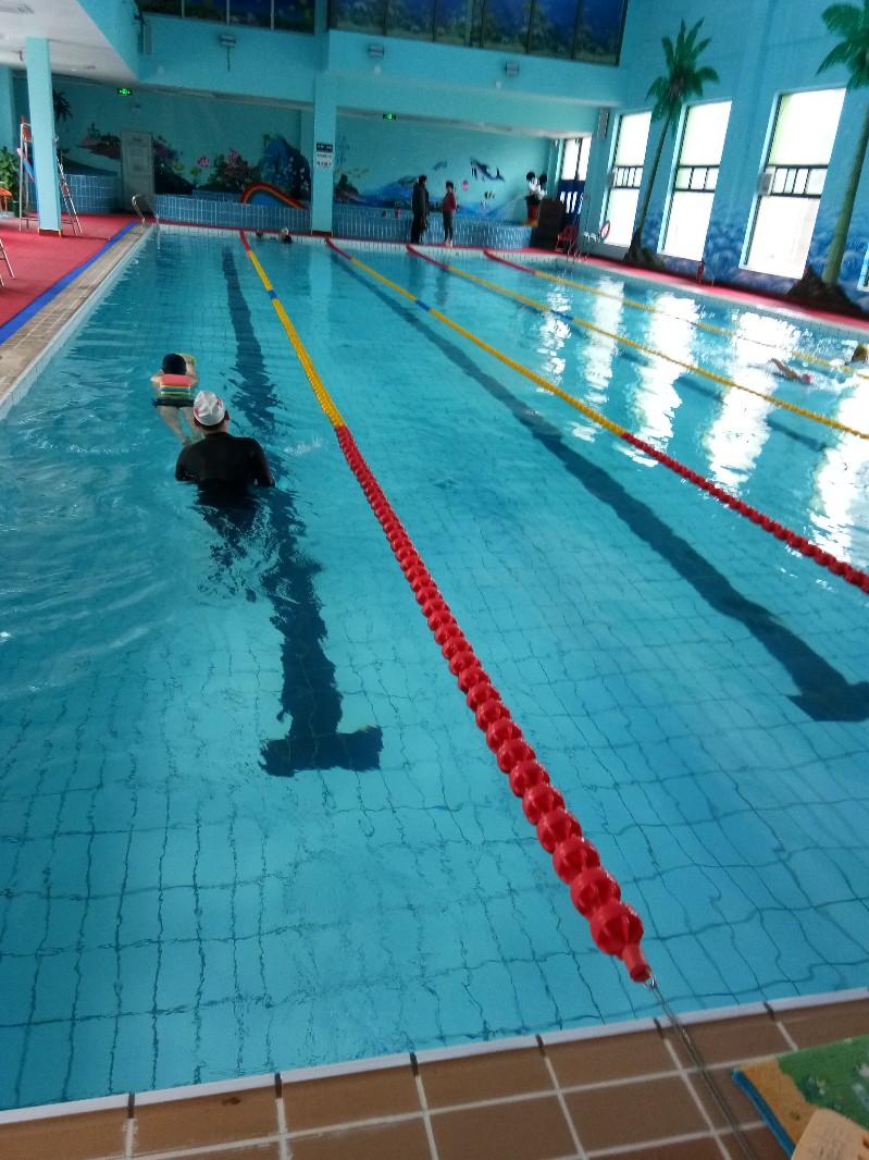 亦庄桥附近游泳馆 较好的游泳俱乐部