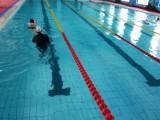亦庄专业12年游泳培训游泳馆办卡优惠了