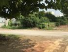 舞阳产业聚集区50亩土地厂房出让位置好,手续全