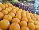 郑州水果店品牌这么多,新手选择加盟看什么