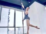 華陽鋼管舞培訓 零基礎包教包會 畢業分配工作