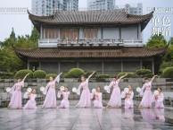 管城区成人业余舞蹈培训班 成人学什么舞蹈好 免费试课